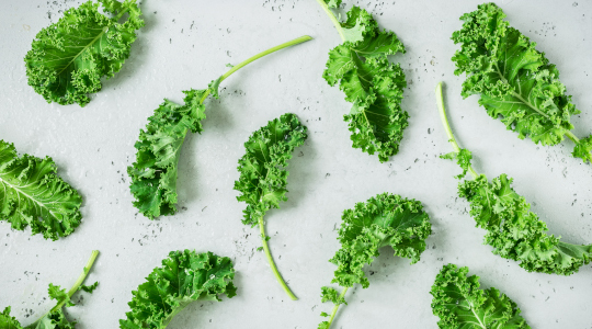 fresh kale leaves laid out on a grey stone worktop