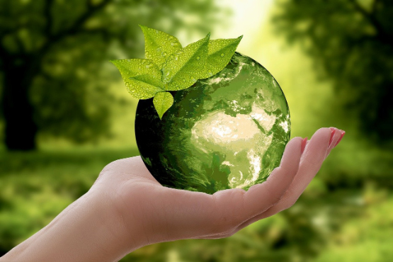 A hand holding a green Earth