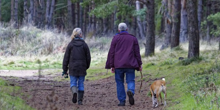An older couple walking their dog in the woods