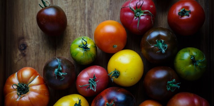 Different coloured tomatoes