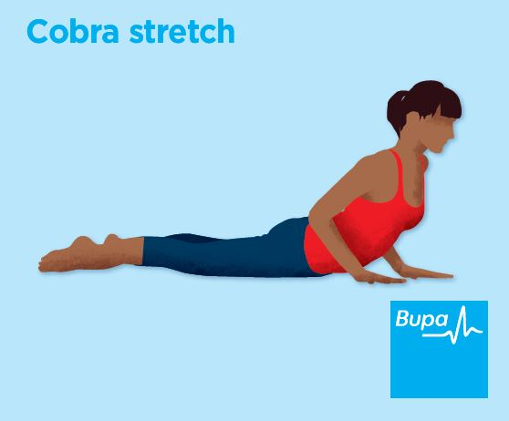 Illustration of a cobra stretch