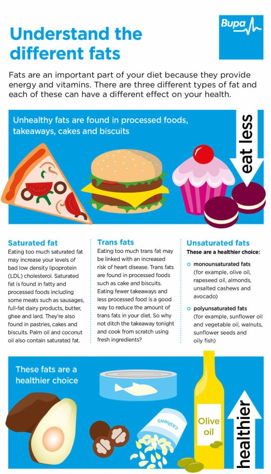An infographic showing the different types of fats