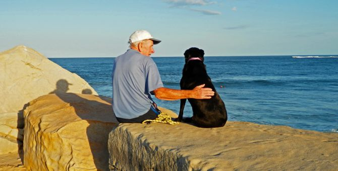 An older man is sitting at the beach with his dog